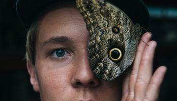 Autoria: O voo de uma mariposa, de Gustavo Machado – Beco Literário