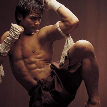 O cinema de artes marciais e seus novos representantes