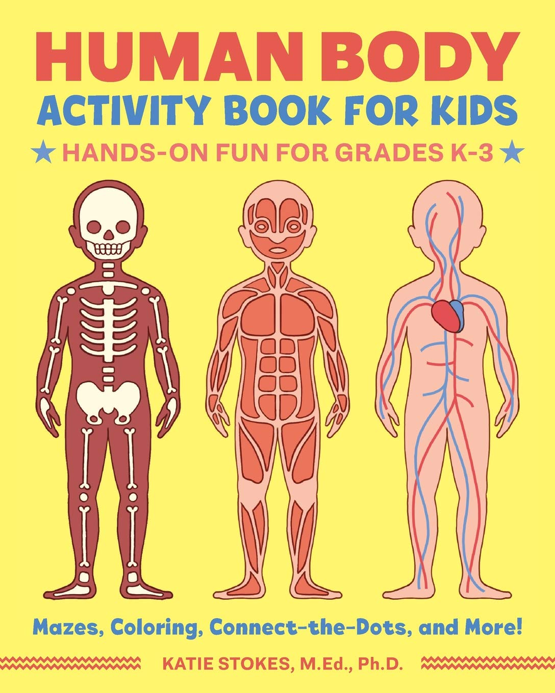 Human Body Activity Book For Kids Only 4 59