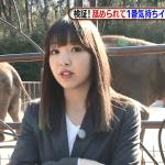 藤田ニコルがスーツ姿で舐められて一番気持ちイイ動物はどれだ?