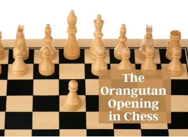 The Orangutan Opening in Chess BecomingAChessmaster.com