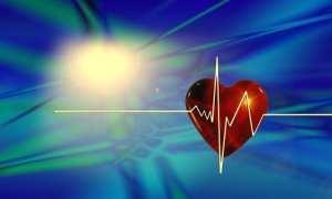 heart beat over a heart