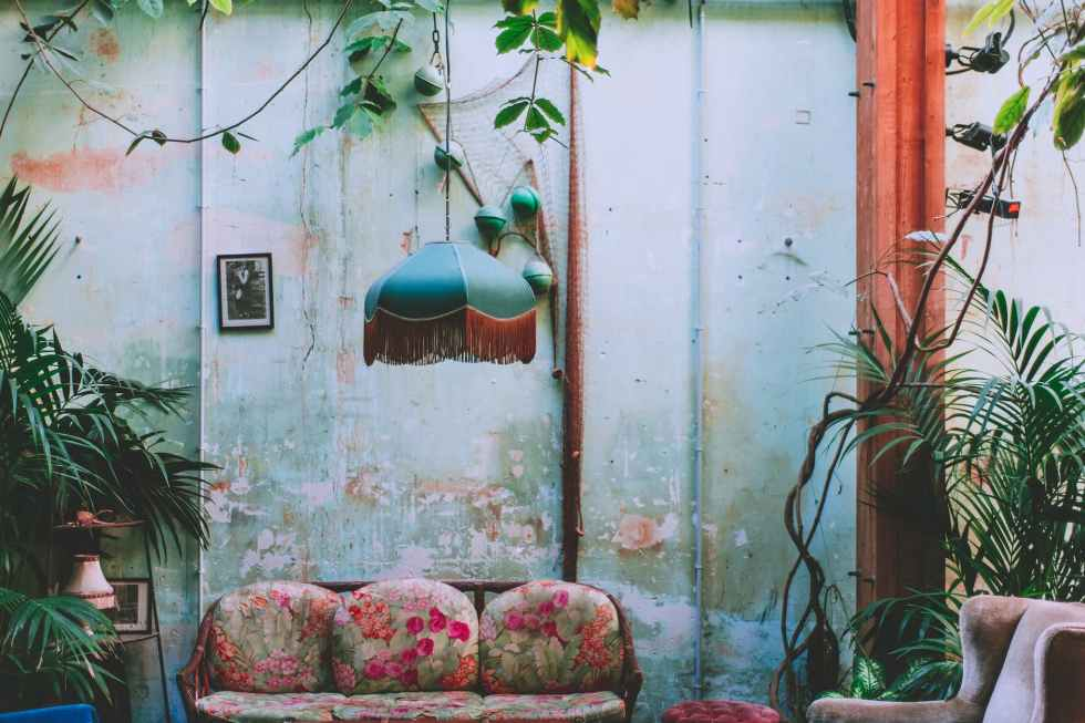 green plants in shabby room interior
