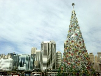 First signs of Christmas at Darling Harbour