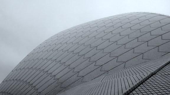 a sail at the Sydney Opera House