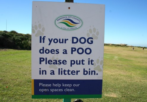 "I love how ""dog"" and ""poo"" are in all caps!"