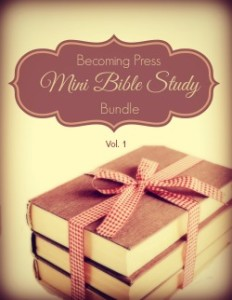 mini_bible_study_bundle_250