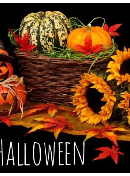 Happy Halloween – WE DID IT!