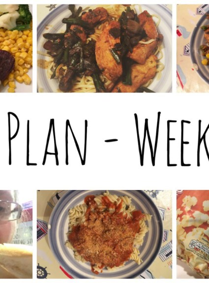Meal Plan – Weeks 2 to 4