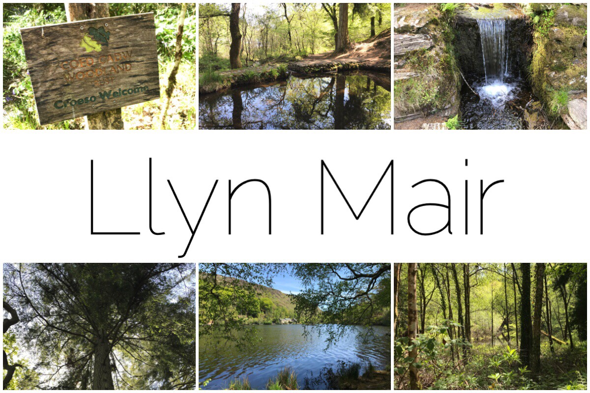 Llyn Mair - six different thumbnail images of the scenery around Llyn Mair