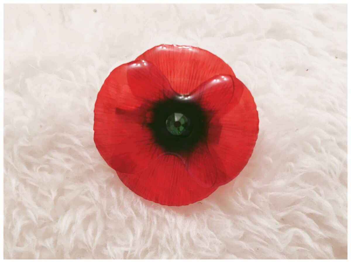 The small red poppy brooch against a white background