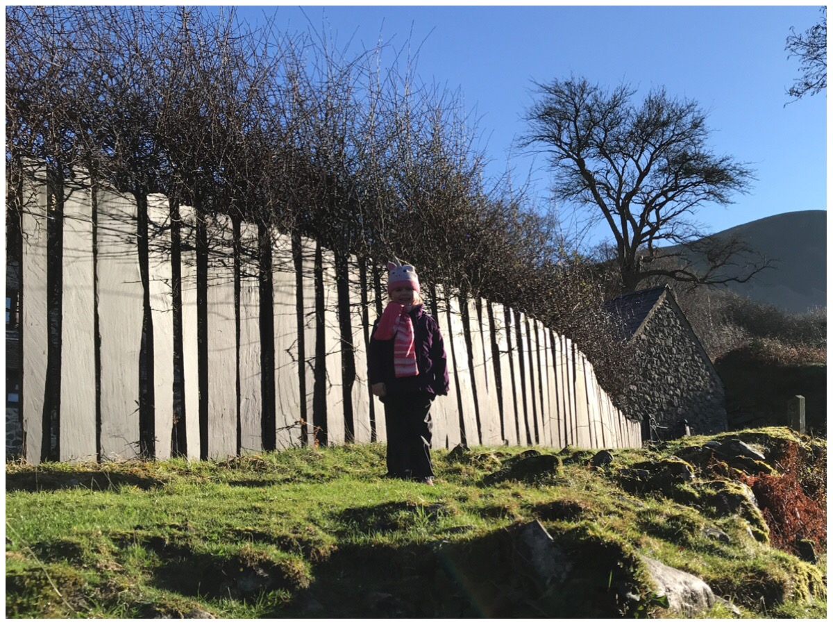 My eldest stood in front of Welsh Slate fencing with a bright blue sky behind her.