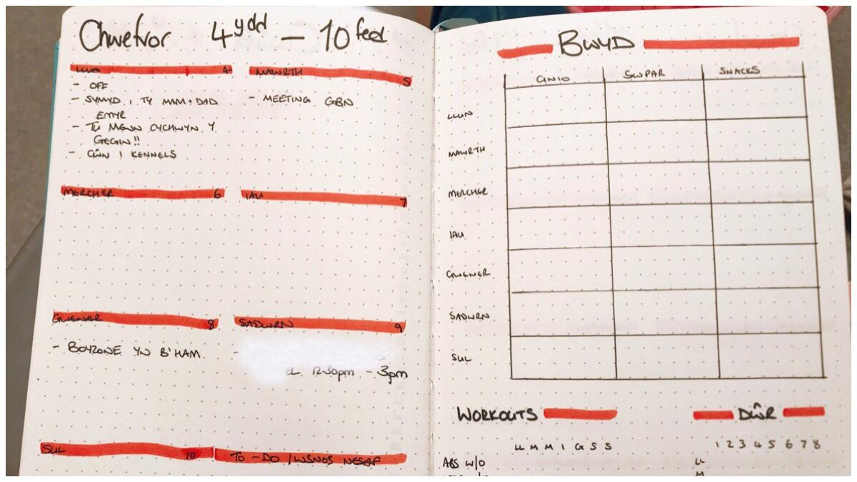 Weekly spread in my bullet journal