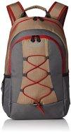 51JbWbdYGfL - Coleman C003 Soft Backpack Cooler