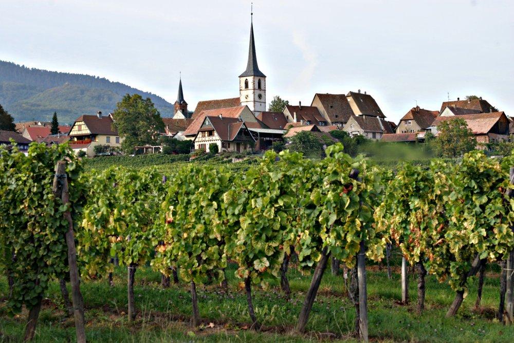 France Route des vins d'Alsace