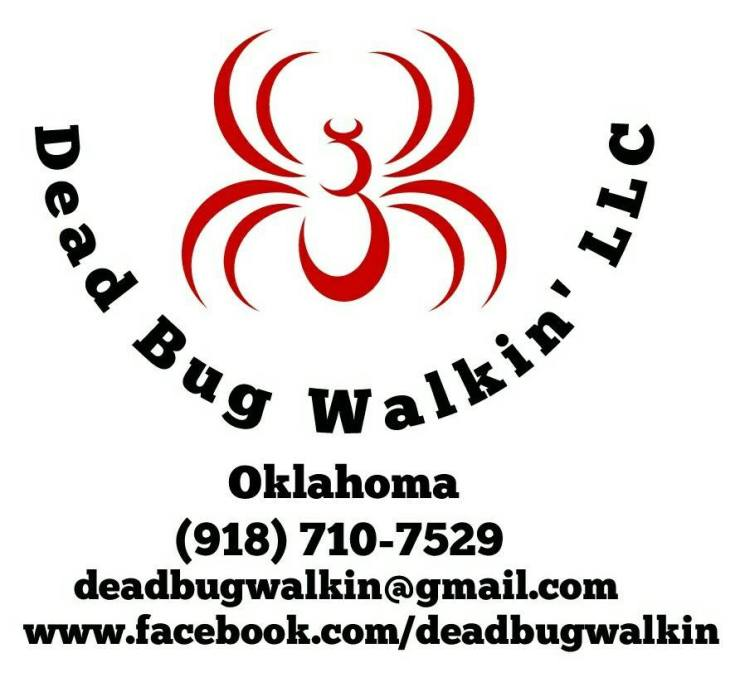 Dead Bug Walkin, Why Our Bed Bug Services: