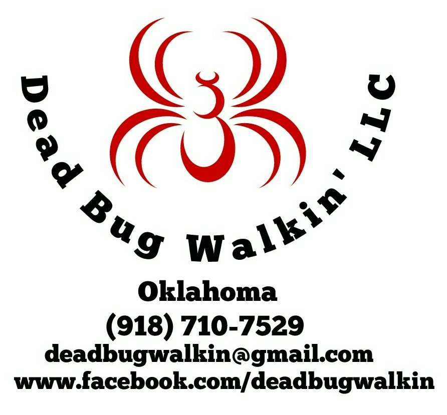 , Identifying Bed Bugs Made Easy., Dead Bug Walkin LLC