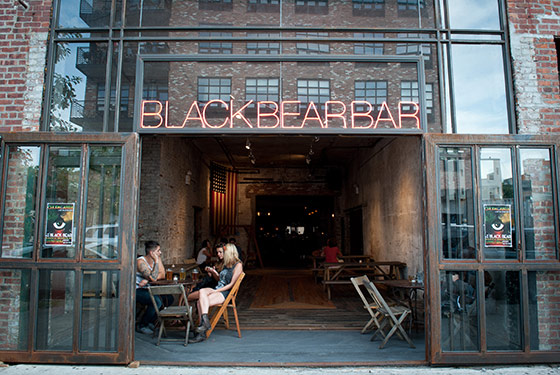 Black Bear (Photo by Liz Clayman)