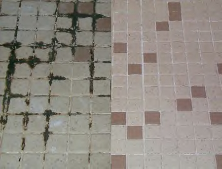 Dealing With Mould And Mildew On Grout Grout Protection