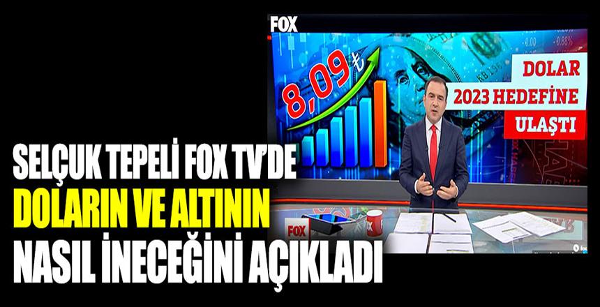 Selçuk Tepeli FOX TV'de doların ve altının nasıl ineceğini açıkladı
