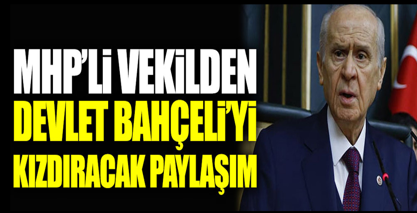 MHP'li İstanbul Milletvekili Arzu Erdem'den Devlet Bahçeli'yi kızdıracak paylaşım