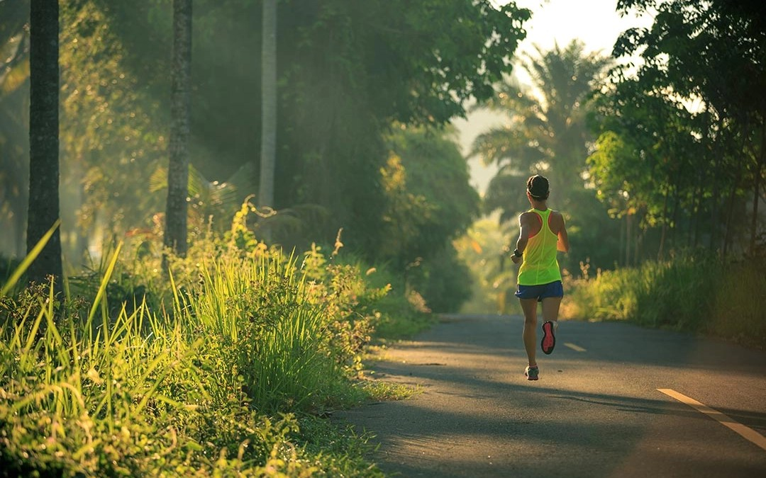 Motivation: foundation of achievement