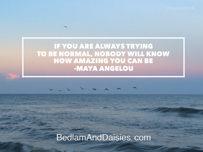 If you are always trying to be normal, nobody will know how amazing you can be. -Maya Angelou