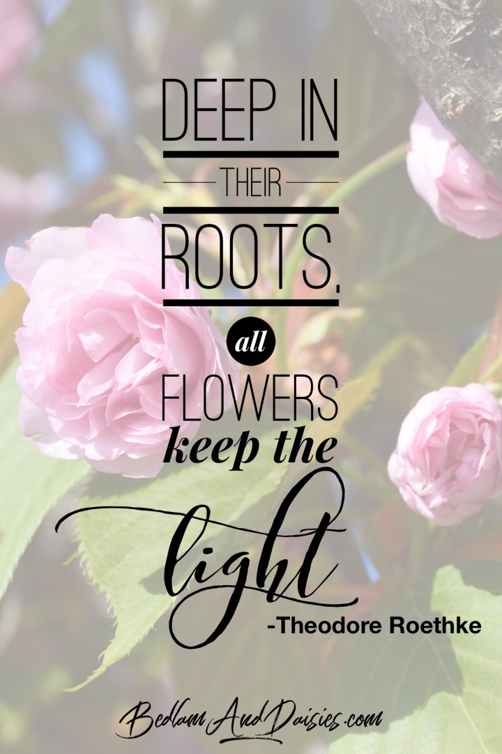 Deep in their roots, all flowers keep the light. - Theodore Roethke