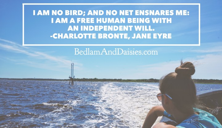 I am no bird; and no net ensnares me: I am a free human being with an independent will. -Charlotte Bronte, Jane Eyre