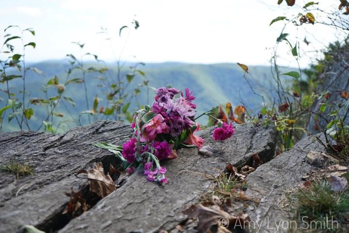 Rock Castle Gorge Trail