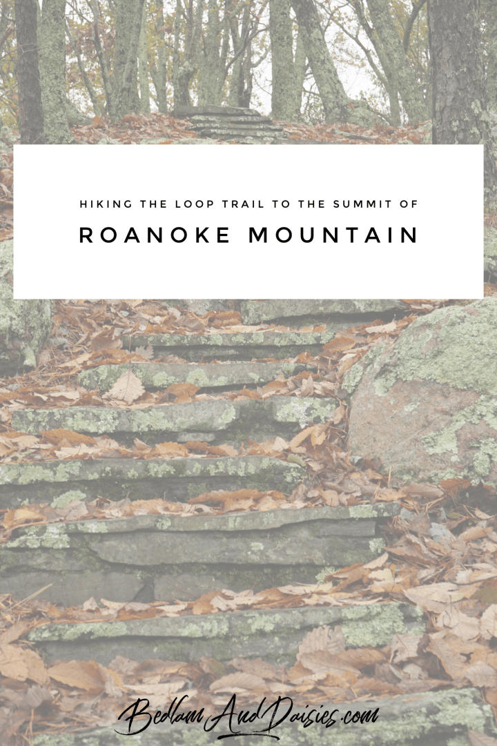 Roanoke Mountain Loop Trail