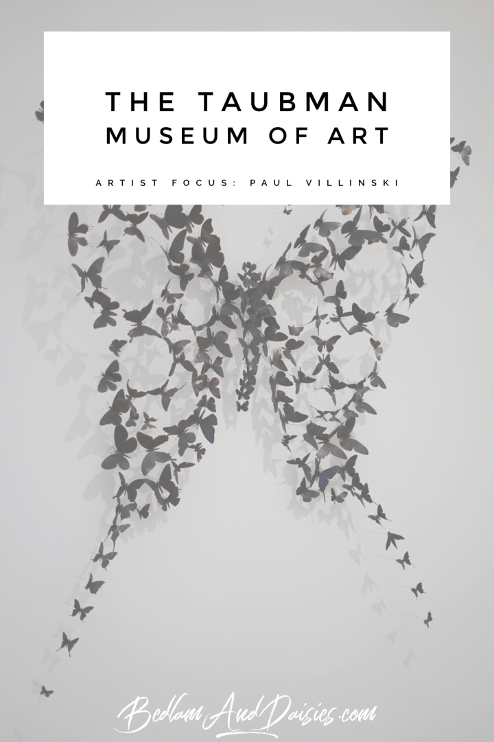 The Taubman Museum of Art Paul Villinski