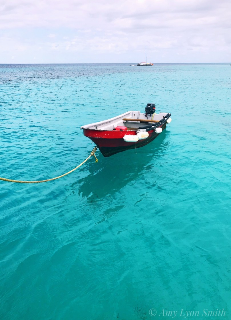 boat in the turquoise waters of Aruba