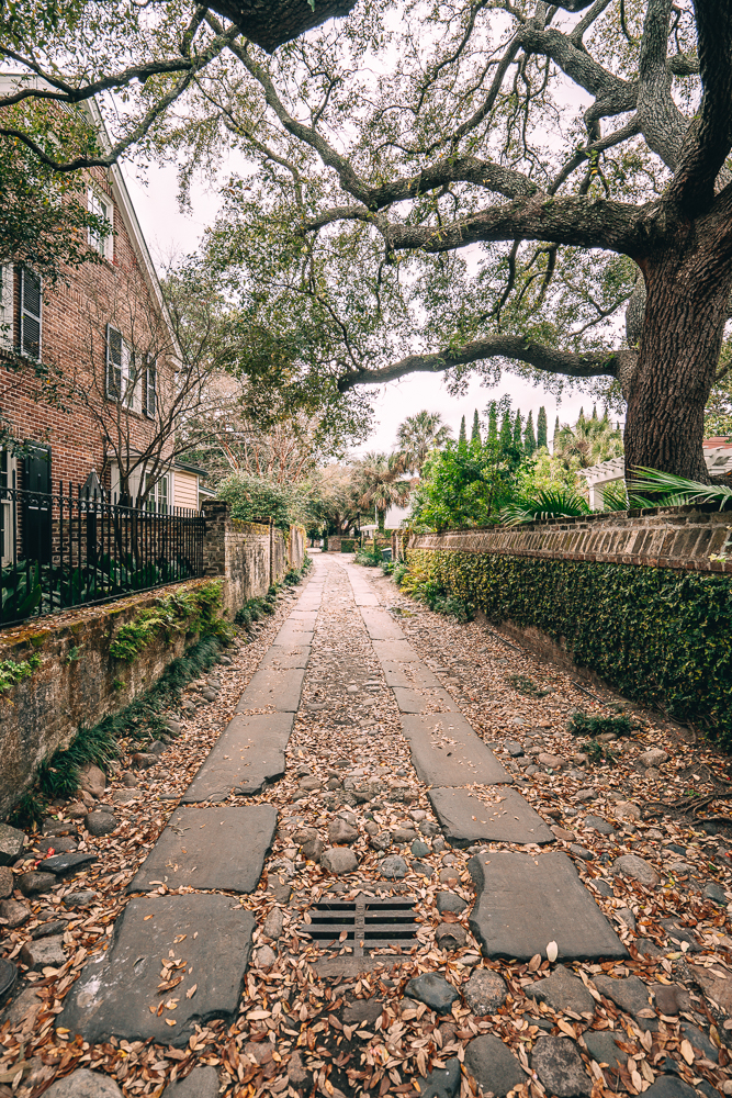 Looking for things to do in Charleston, South Carolina? From Longitude Land and more. Check out these 11 things that you'll want to do during a trip to Charleston.
