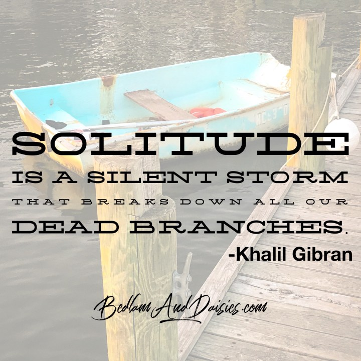 Solitude is a silent storm that breaks down all our dead branches. -Khalil Gibran