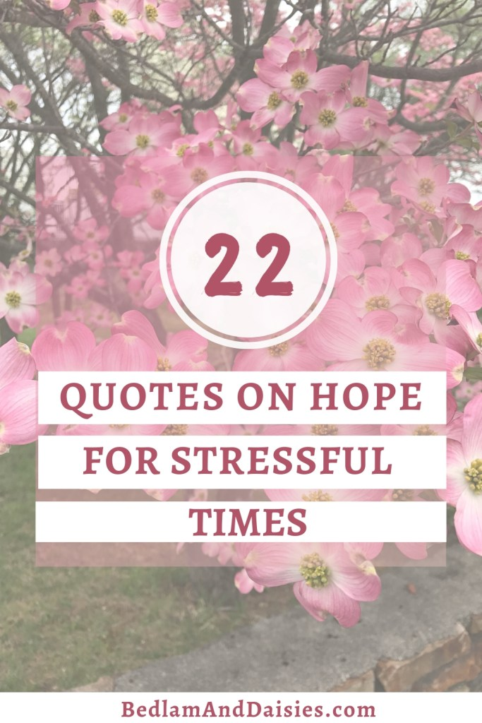 As a world, collectively, and as individuals, we are going through stressful times. Here are 22 quotes on hope to help you through stressful times.