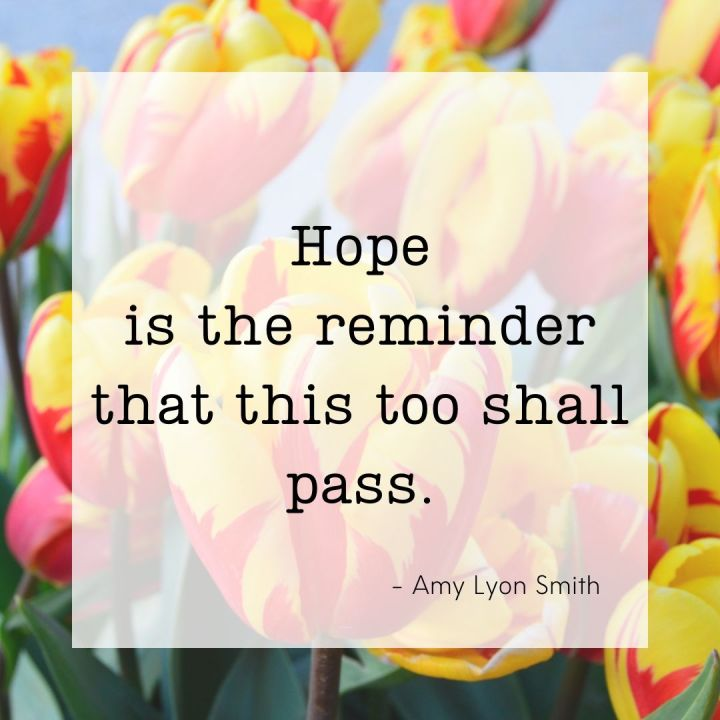 Hope is the reminder that this too shall pass. -Amy Lyon Smith