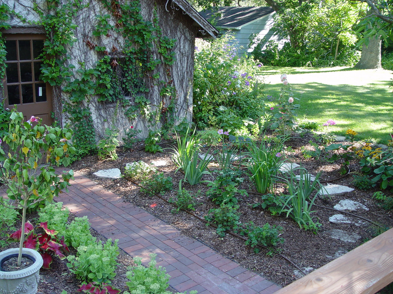 Landscape 101 beds and borders landscape design for Garden design 101