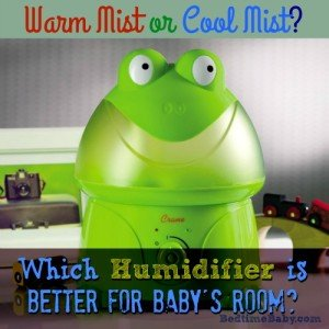 Warm or Cool Mist Humidifier