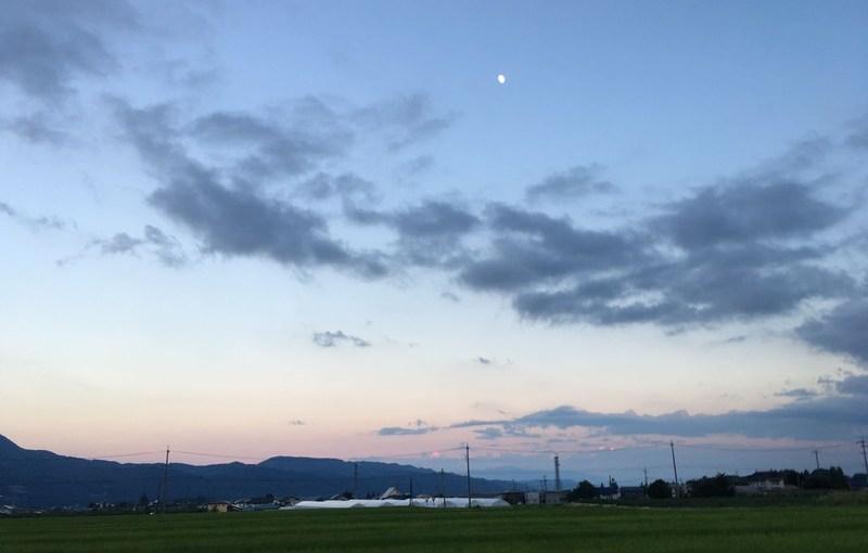 [打工換宿wwoof]那些看山的日子