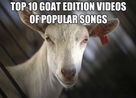 Top 10 Goat Edition Videos of Popular Songs