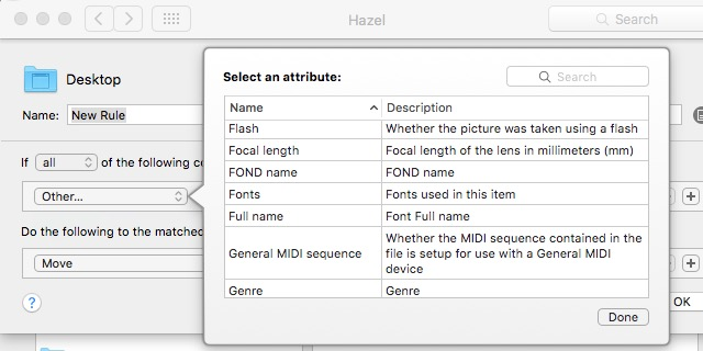 Hazel -bb- 04b - Spotlight Attributes