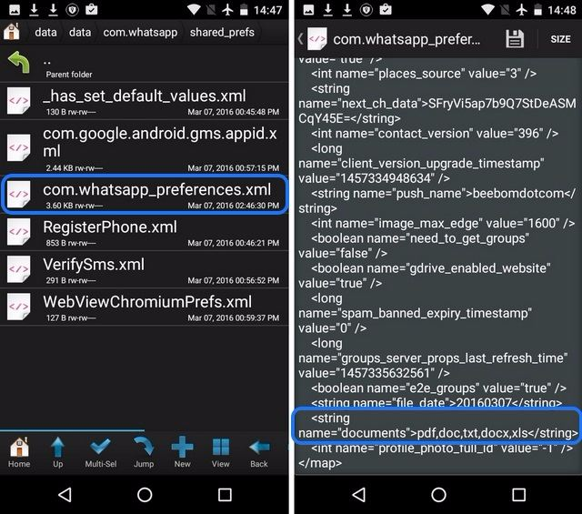 WhatsApp preferences root files