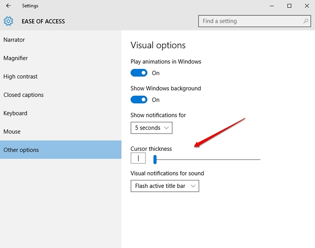 Windows 10 Other options