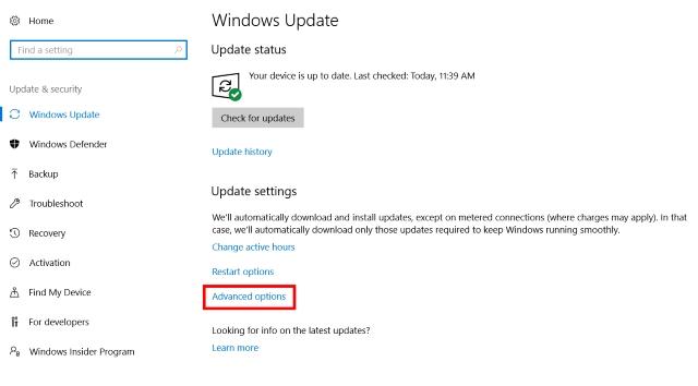 Update Settings - Advanced Options