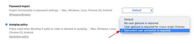 флаг политики автозапуска Google Chrome