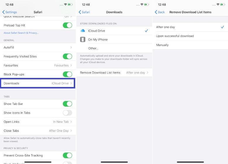 Personalizar las descargas de Safari en iOS 13