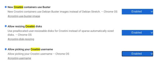 Instale Debian Buster en Chromebook 4