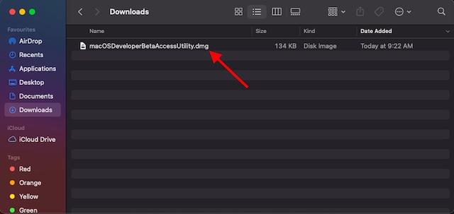 Utilidad de acceso de macOS beta