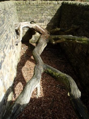 Andy Goldsworthy sculpture Hanging Trees 2007